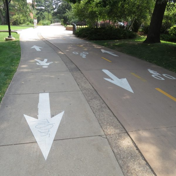 We loved the biking and walking lanes all over campus