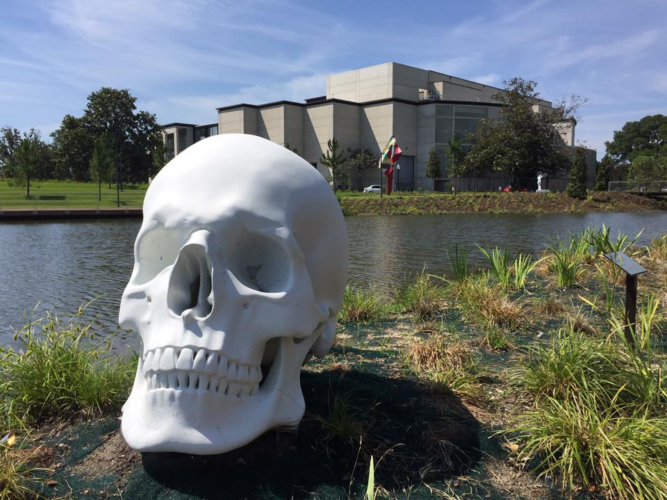 Katharina Fritsch, Schädel (Skull) 2017 with New Orleans Museum of Art in background. Painted bronze.